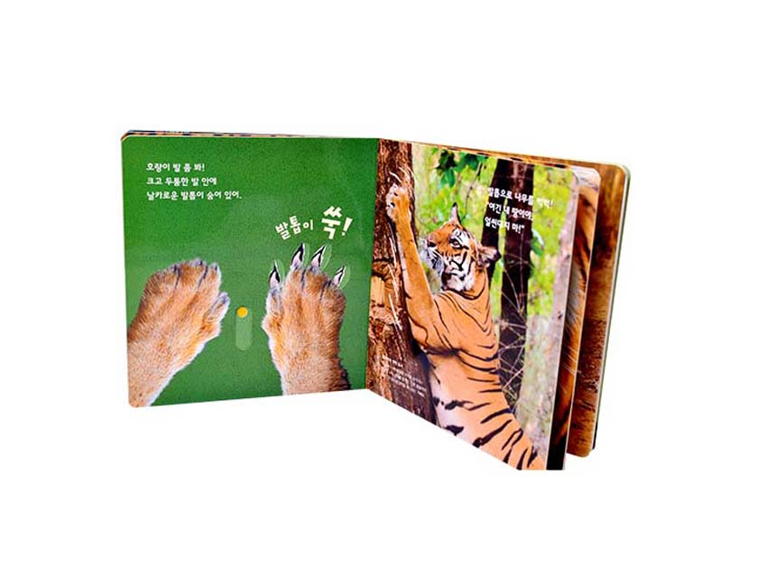 Tiger Board Book Printing